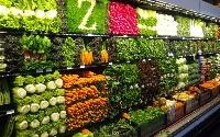 Изображение - Условия для открытия магазина фасоль по договору франчайзинга от metro 419